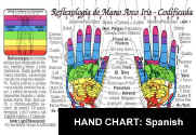 HAND REFLEXOLOGY Chart - In SPANISH: